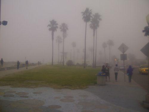 Ocean beach fog 1